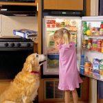 Norcold NXA641 RV Refrigerator - Installed in RV